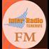 Inter Radio Tenerife Variety