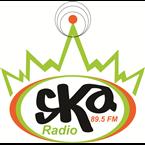 SKA RADIO