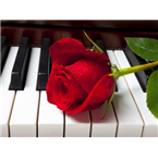 Amor Radio Romántica