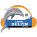 Radio Delfin Top 40/Pop