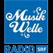 SRF Musikwelle Folk