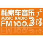 Wenzhou Music Radio Top 40/Pop