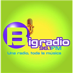 96.1 Fm Big Radio Top 40/Pop