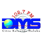 Radio DMS Top 40/Pop
