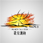 Huaer Talk Box