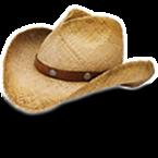 Cowboy One
