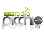 Radio Picchio FM Top 40/Pop