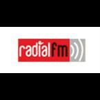 Radial FM Electronic