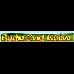 Radio Zvizd Top 40/Pop