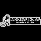 Radio Hallingdal Sports Talk & News