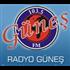 Radyo Gunes Variety
