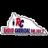 Radio Carrizal Local Music