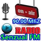 Radio Senzual FM Electronic