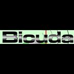 Rádio Bicuda MPB