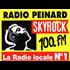 Radio Peinard Skyrock Blues