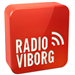 Radio Viborg Top 40/Pop