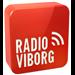 Radio Viborg Top 40/Pop