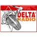 Delta Radio Top 40/Pop
