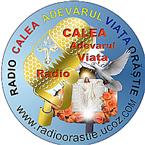 Radio Orastie