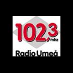 Radio Umea Variety