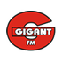 Gigant FM Adult Contemporary