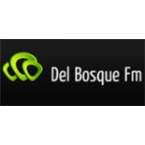 Del Bosque FM Top 40/Pop