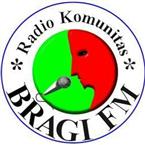 Bragi FM Variety