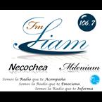 106.7 FM SIAM NECOCHEA World Music