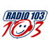 Radio 103 Piemonte Top 40/Pop