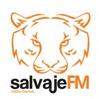 Salvaje FM Electronic