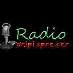Radio Aripi Spre Cer Christian Contemporary