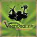 Vechtdal FM Top 40/Pop