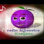 Radio Sljivovica Folk