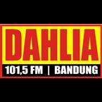 Radio Dahlia Top 40/Pop