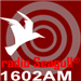 Radio Seagull Adult Rock
