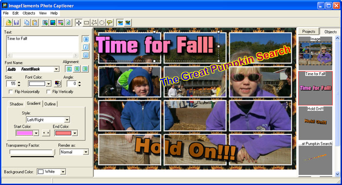 ImageElements Photo Captioner