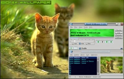 winamp bionix wallpaper softwares free download freewares